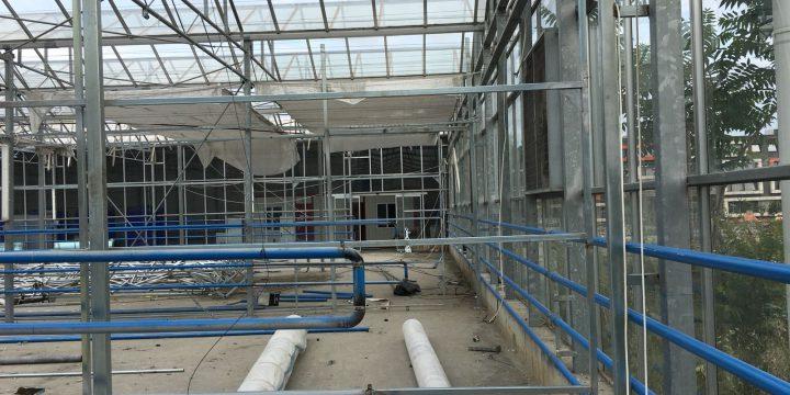 Hidroponik Sera – Havuzda Üretim